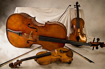 3 string instrument image